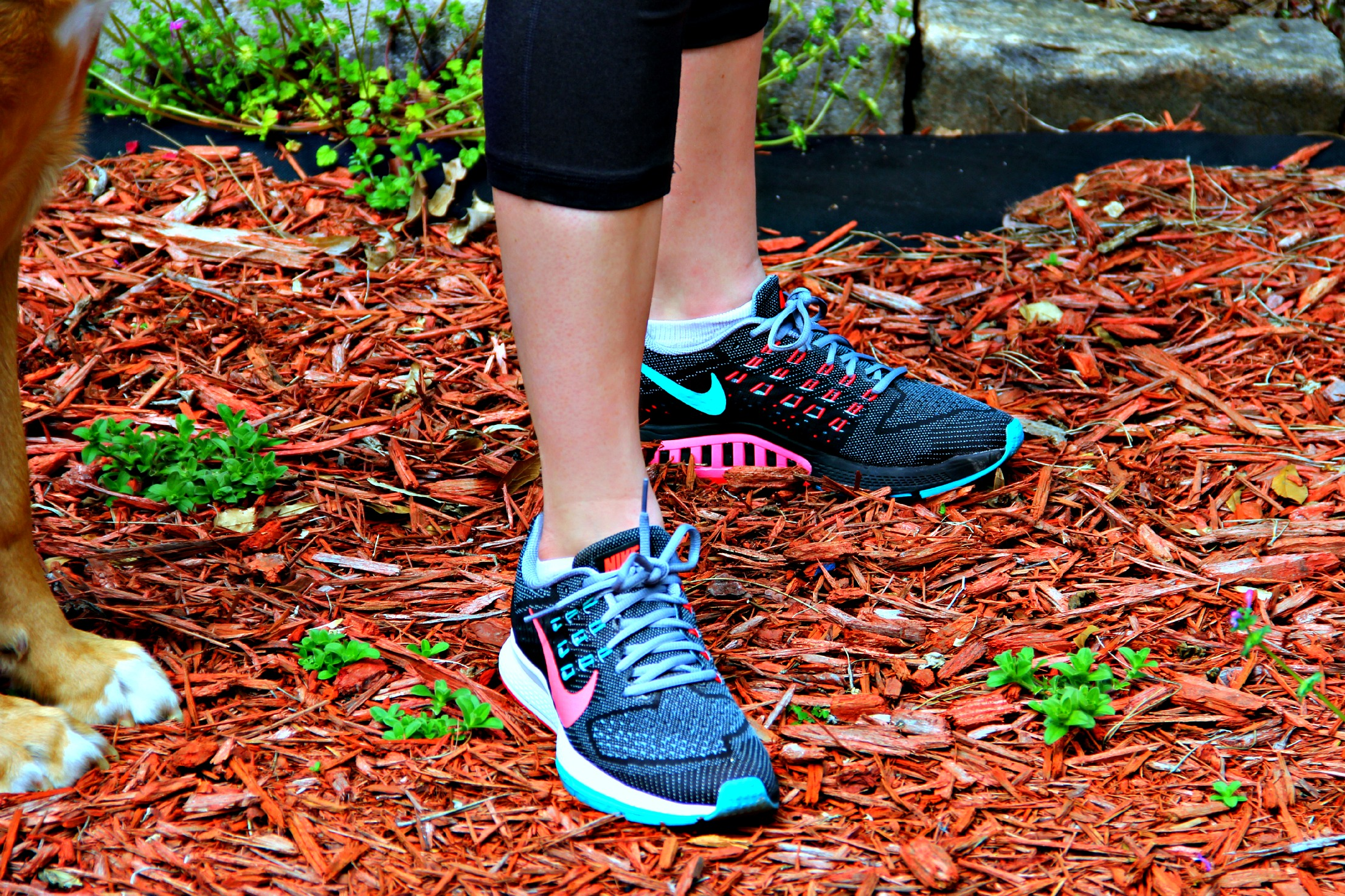 Durban Runner | Welcome Specialist in fitness gear. The Durban Runner is a specialist fitness sports store stocking all the latest running, triathlon and multisport equipment.