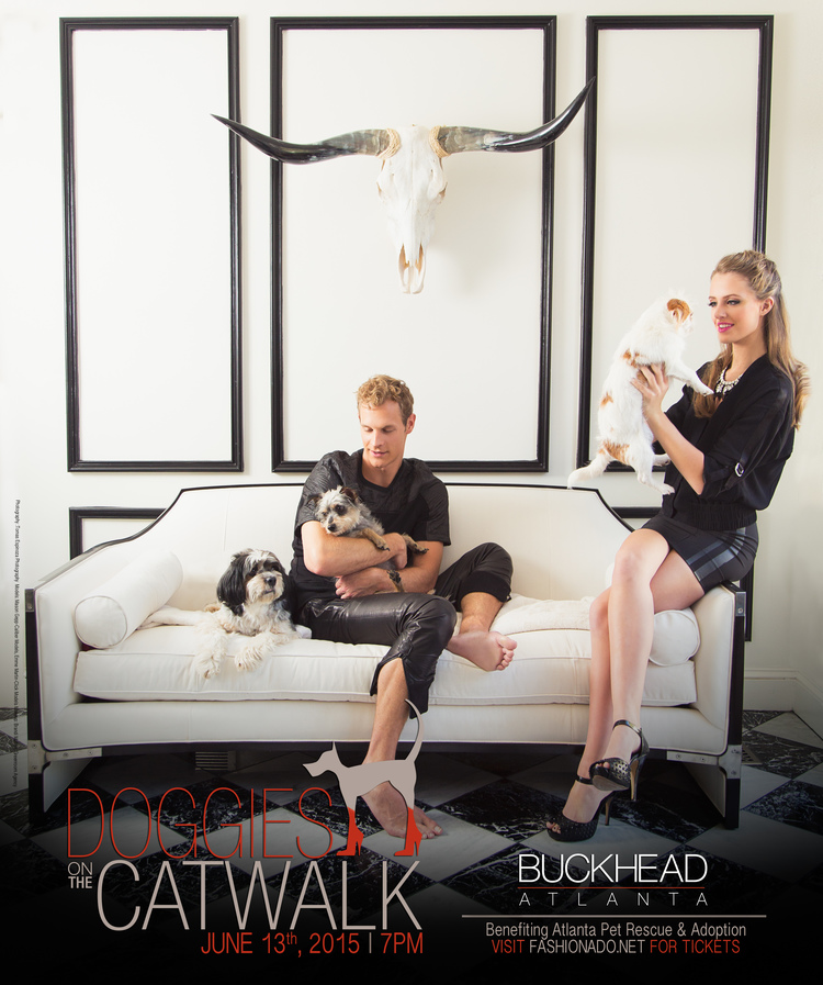 doggies+on+the+catwalk